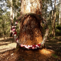 Donnelly River Village wedding ceremony in front of this beautiful tall tree - perfect.